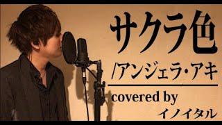 【男が歌う】サクラ色/アンジェラ・アキ  by イノイタル(ITARU INO)歌詞付きフル