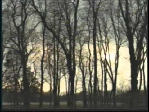 President VanBuren Film