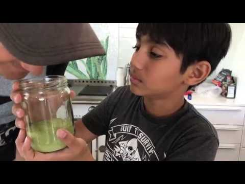 Making Moringa Powder with Dried Leaves | Most Healthy Food!!!