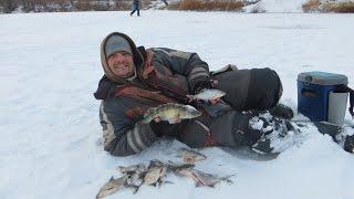 Ах , ця зимова риболовля!
