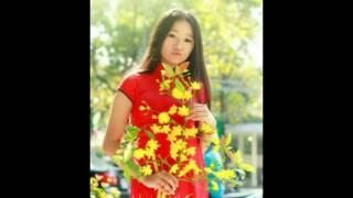 Kỷ Niệm Một Mùa Xuân - Thanh Tuyền, Thanh Vũ ( Dĩa hát VIỆT NAM )