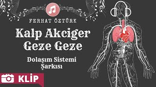 Dolaşım Sistemi Şarkısı - Kalp Akciğer Geze Geze