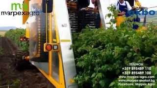 КОМБАЙН ЗА МАЛИНИ OXBO / OXBO Raspberry Harvester
