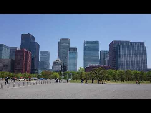 Tokyo City View from Kokyogaien National Gardens