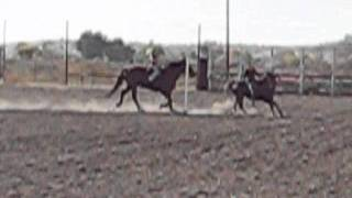 Cessna & Josie... Play Day 2011. 7 year old girl riding 16.3 hand horse.