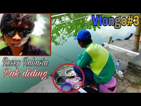 Mengungkap Resep rahasia umpan pak diding ; untuk mancing ikan Mas - Lomba dan harian   Vlongo#3
