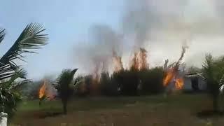ಕಬ್ಬಿನ ಗದ್ದೆಗೆ ಬೆಂಕಿ Fire accident on sugar cane