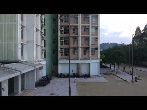 time-lapse testing 2234 | Sonia Jan Leung