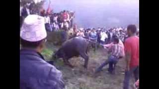 Dashain Mela 2070