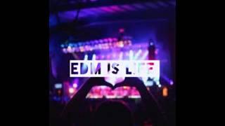 Edm is life #1 (DJ Nikk)