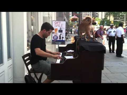 Playing Caravan at the South Street Seaport