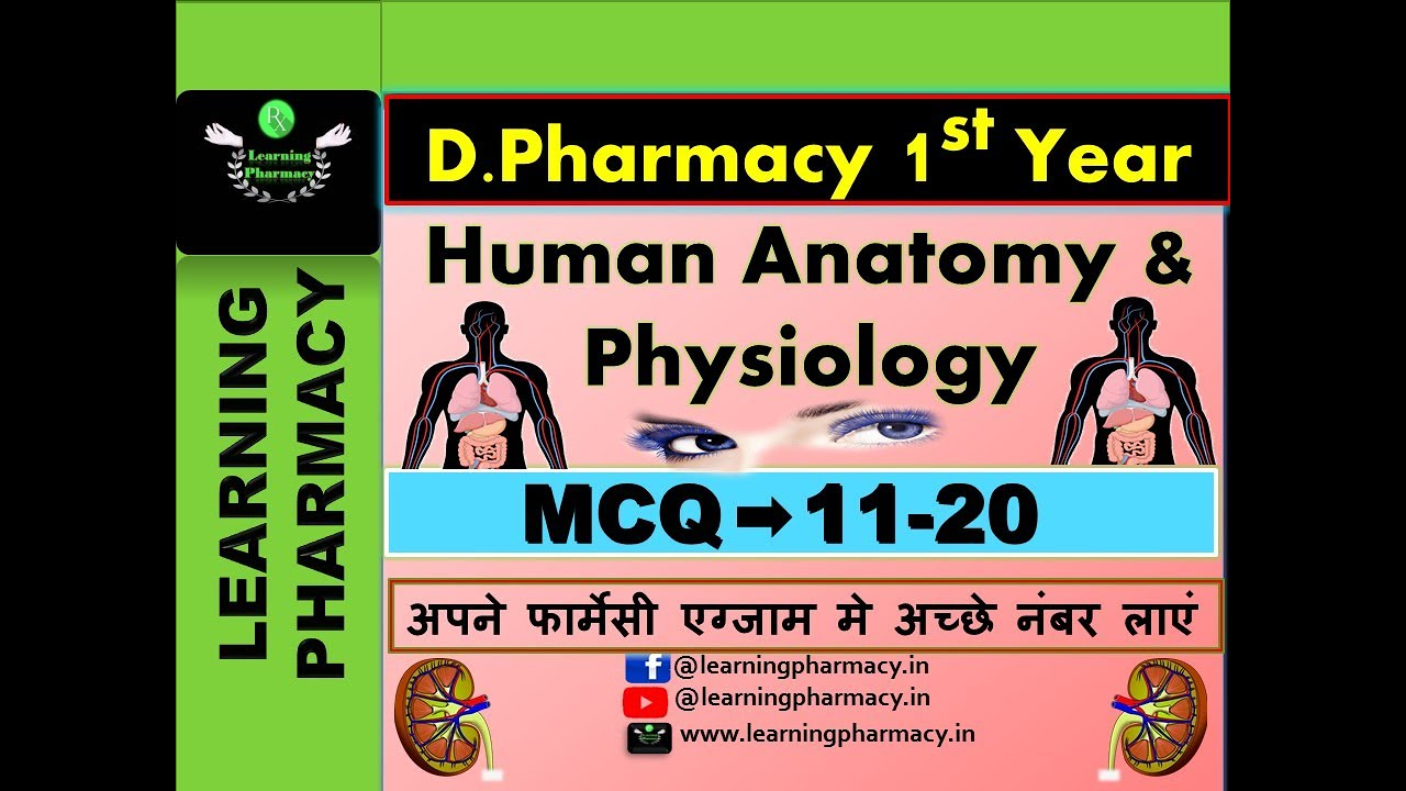 MCQ 11-20 | Human Anatomy & Physiology | D.Pharmacy 1st Year |  With Complete Explanation | In Hindi