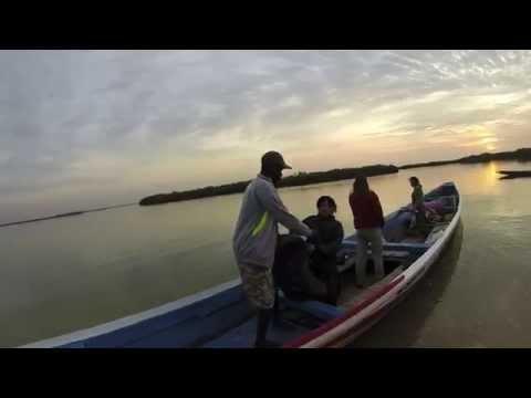 Bridge Year Senegal, Sine-Saloum Delta