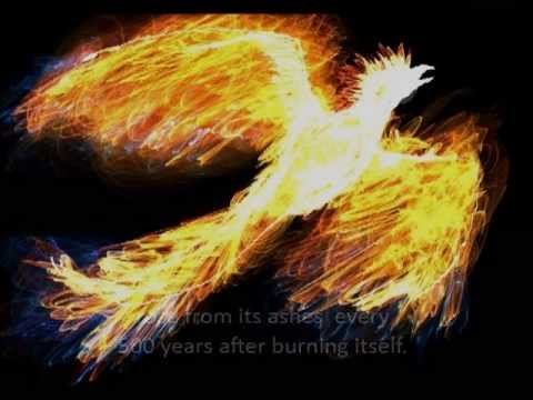 Myth of The Phoenix