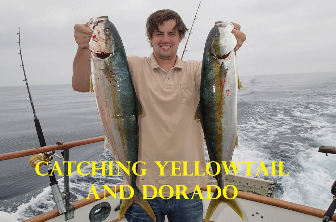 Huntington Beach Yellowtail Fishing With A Few Dorado Great Uncle Roger
