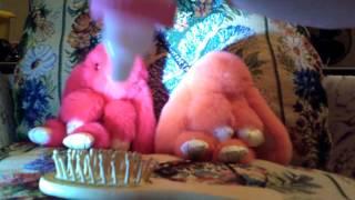 Как ухаживать за пушистыми брелками кроликами