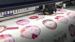 видео Печать круглых цветных наклеек