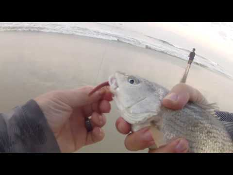 Surf Fishing - Huntington Beach, CA