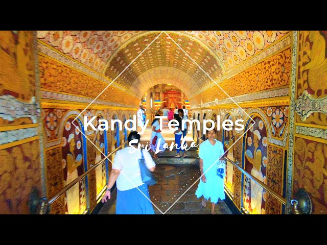 Kandy temples to Sigiriya spice gardens - Sri Lanka, 2018 || BEMBALYFE