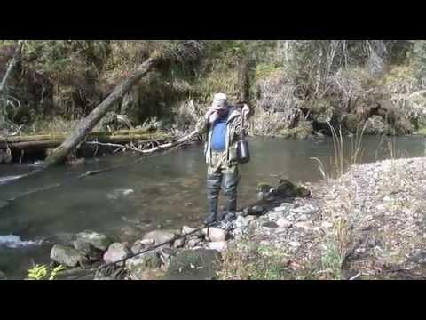 ловля хариуса на малых реках поплавочной удочкой