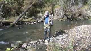 Речка Клай. Ловля хариуса на малых реках. HD