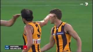 Round 1 AFL - Hawthorn v Geelong Highlights