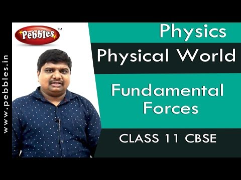 Fundamental Forces : Physical World | Physics | Class 11 | CBSE