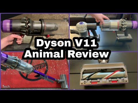 dyson-v11-animal-review---cordless-vacuum-demo