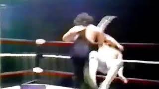 WWE World Wrestling Empire TV Show 1995