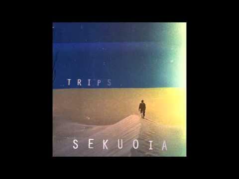 Sekuoia-Evenings