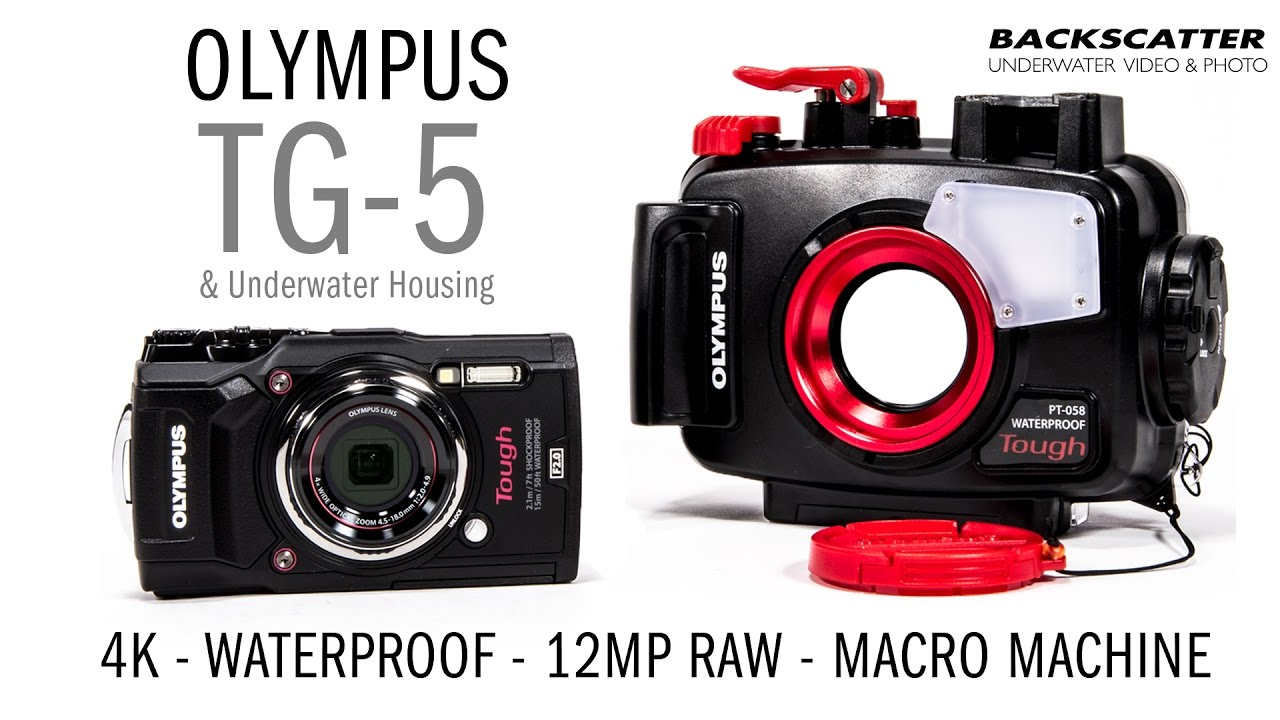 Olympus Digital Camera 5 First Hands-On Look: Olympus TG-5 Underwater Camera