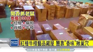 逮山老鼠銷贓集團!起出千萬珍貴木材|三立新聞台