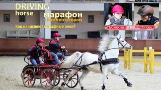 Битва чемпионов в конном драйвинге: мини-марафон Прохорова vs Попова (конный спорт)