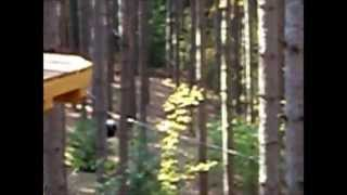 ALG 2012   Ganaraska Treetop Trekking