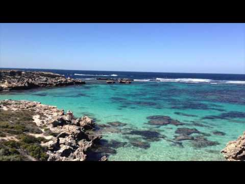Trip Rottnest Island - Perth - Australia