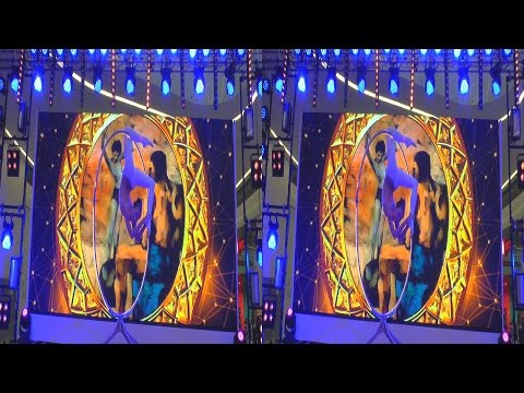 (3D) Aerialist Contortionist Circus