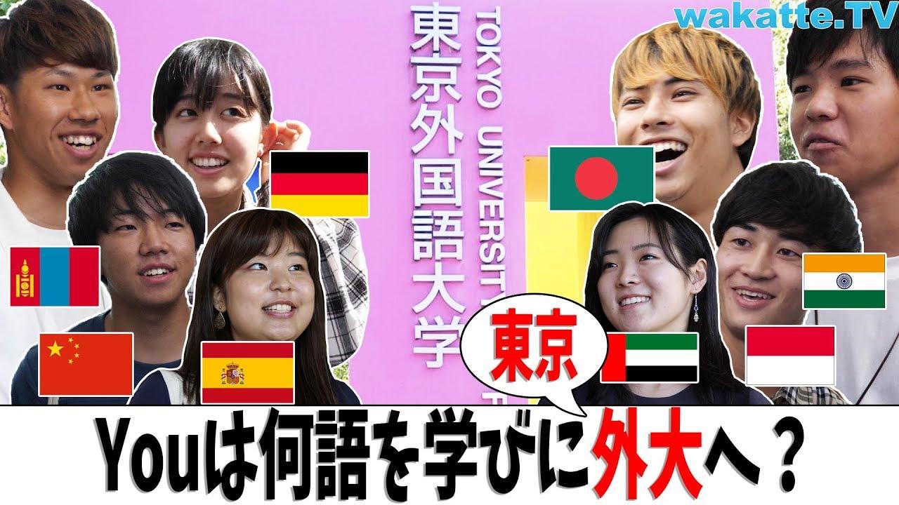 大学 東京 外国 語