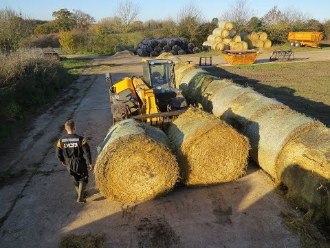 Making a straw clamp for the fodder beet with the JCB 526-56!