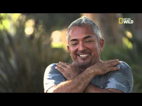 Cesar 911 - Hilarious Deleted Scenes