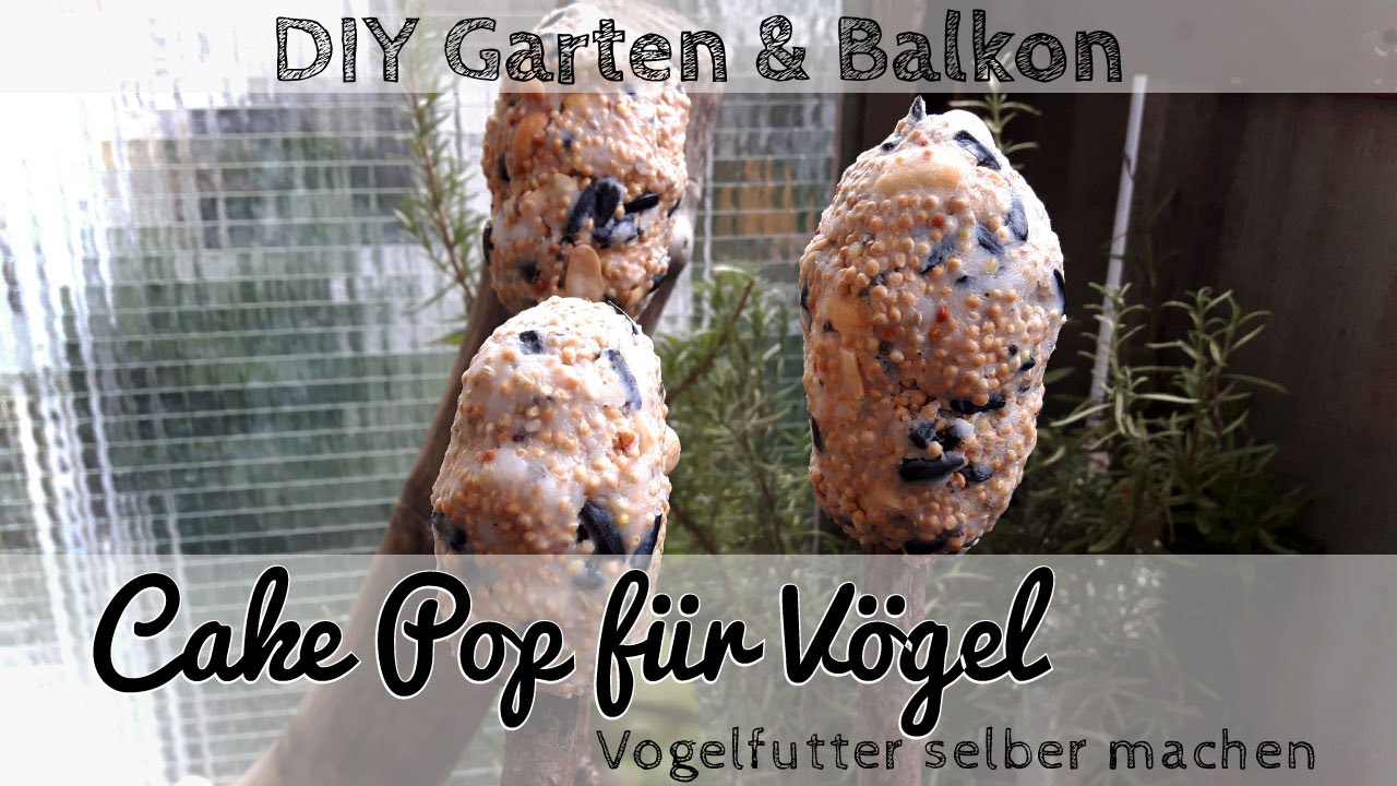 vogelfutter selber machen cake pop f r v gel youtube. Black Bedroom Furniture Sets. Home Design Ideas