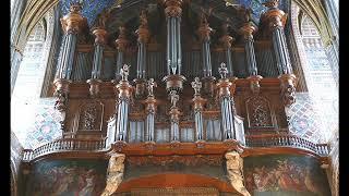 J.S Bach - BWV 527— Organ Sonata No.3 in D minor (Peter Hurford)