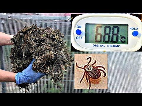 КАК использовать ГОРЯЧУЮ траву в теплице?
