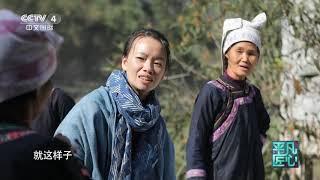 《平凡匠心》 20191124 走回大山·杨成兰| CCTV中文国际