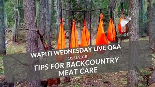 Backcountry Meat Care | Wapiti Wednesday Q&A - Episode 39