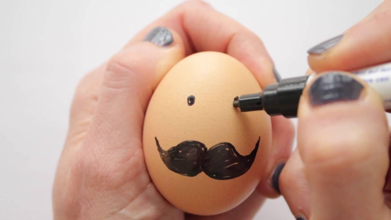 540 Sketsa Gambar Hewan Dari Cangkang Telur Gratis Terbaik