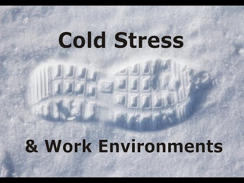 Cold Stress & Work Environments