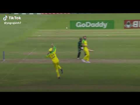 Maxwell Best Throw Full Video ( World Cup 2019 )