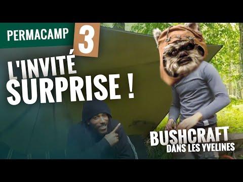 PermaCamp Vol. 3 : L'invité surprise ! - Bushcraft dans les Yvelines