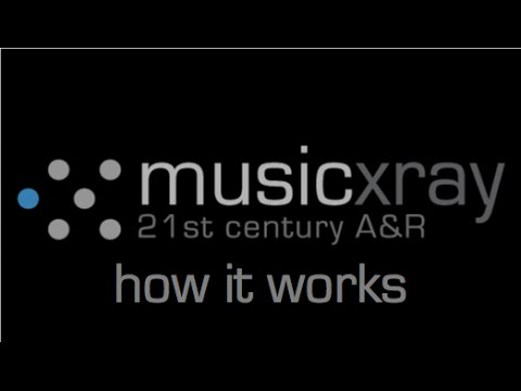 Music Xray - How it works (artists)