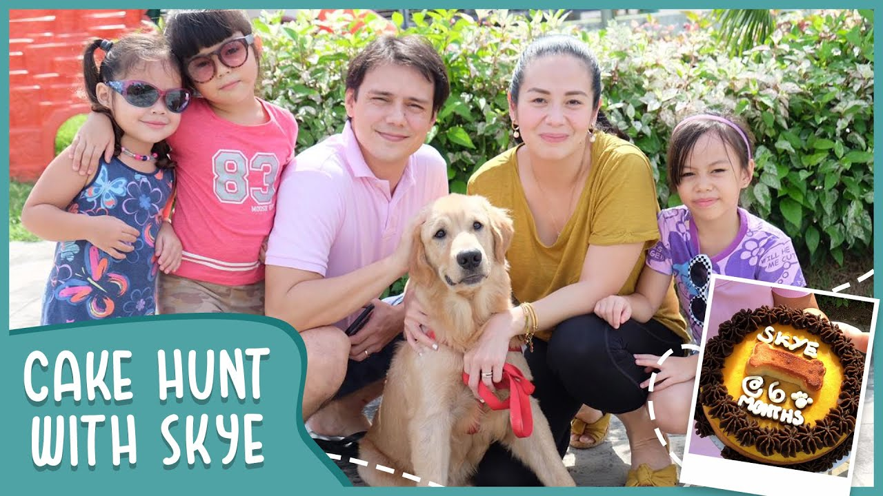 Cake Hunt With Skye! | Garcia Family